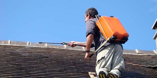 Nettoyage Et Demoussage De Toiture 94 A Fresnes Couverture Lariviere